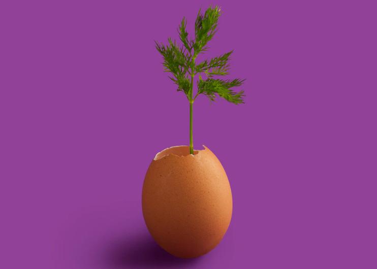 purple-egg-idea